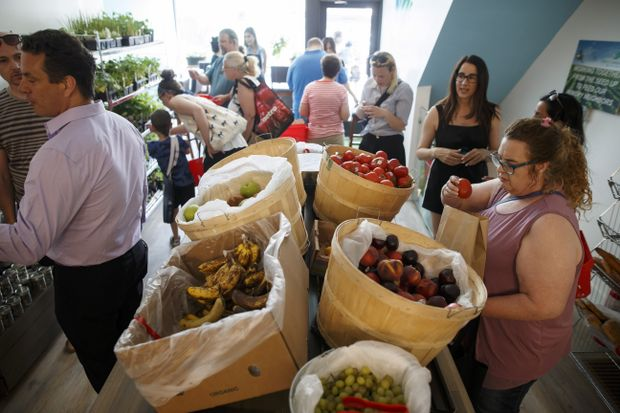 Pay-what-you-can grocery opens in Toronto, but experts say model can be hit-or-miss
